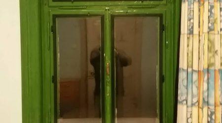 groene voorzetramen